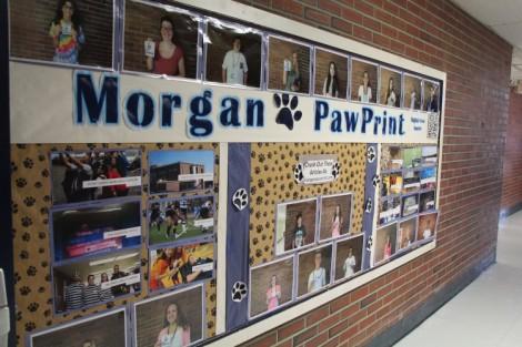 pawprint bulletin board