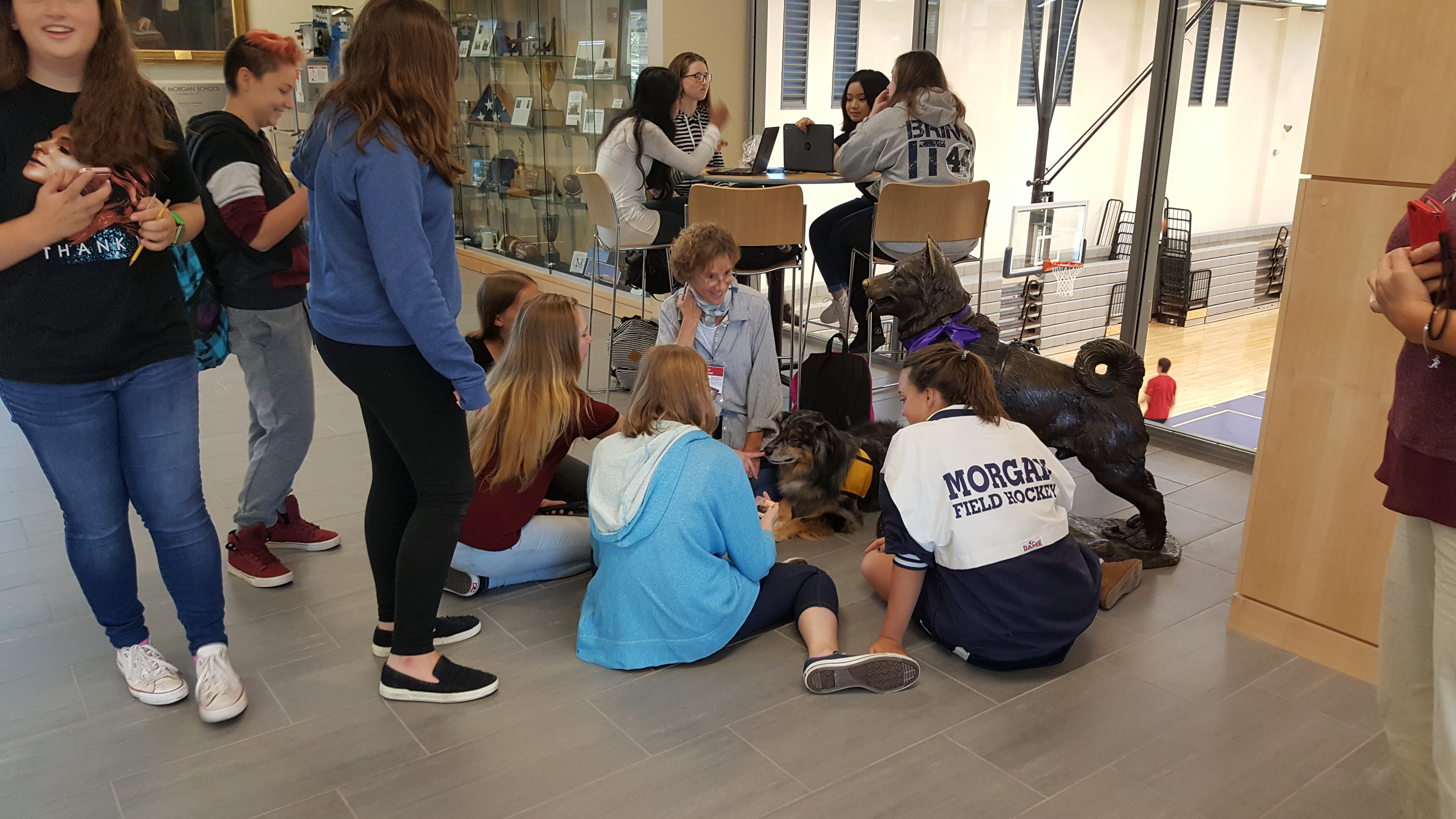 therapy dogs (Oct 5,2016)